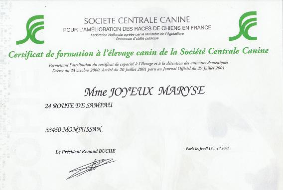 centrale canine formation